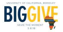 Big Give and African Studies 2018